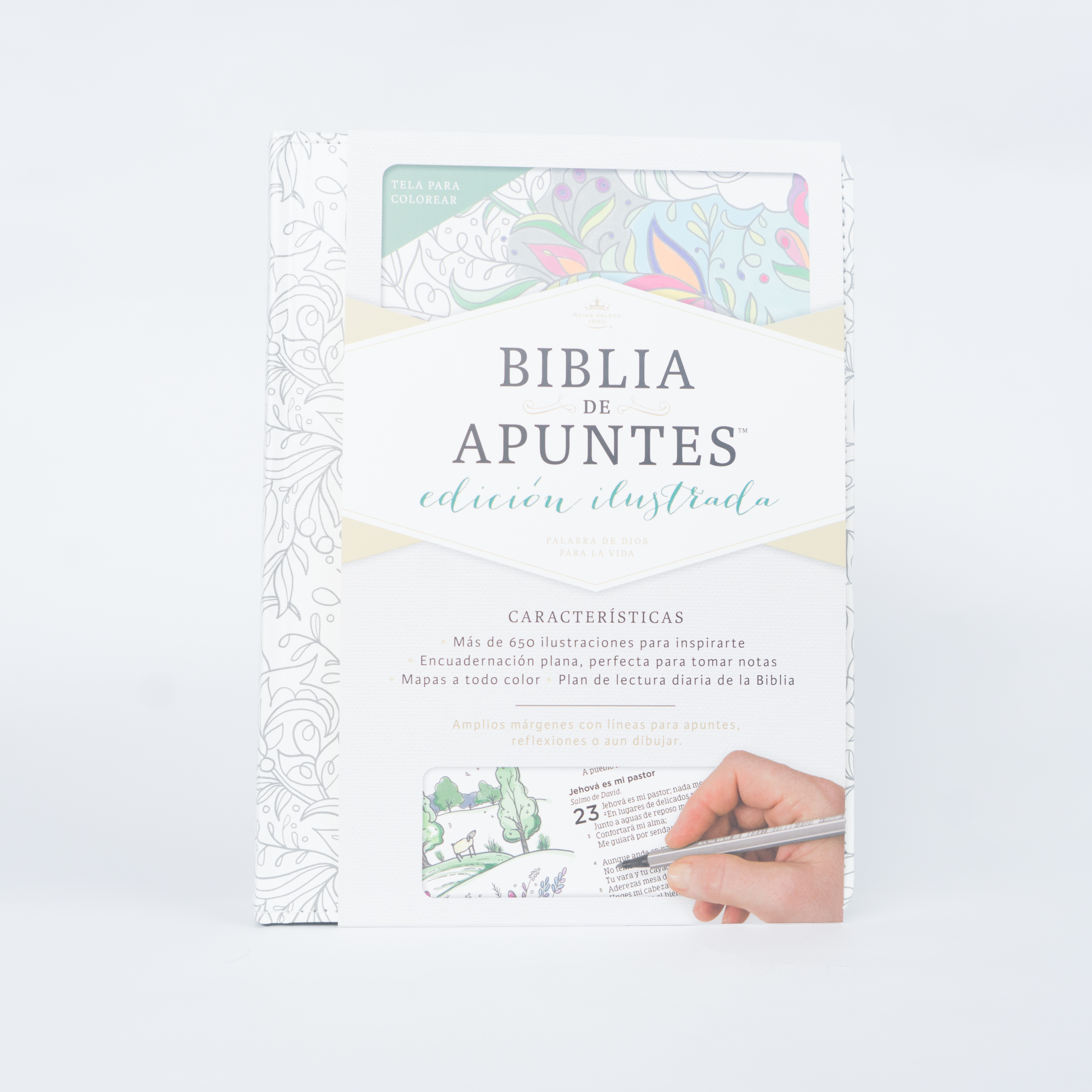 BIBLIA DE APUNTES EDICIÓN ILUSTRADA TELA EN BLANCO PARA COLOREAR ...